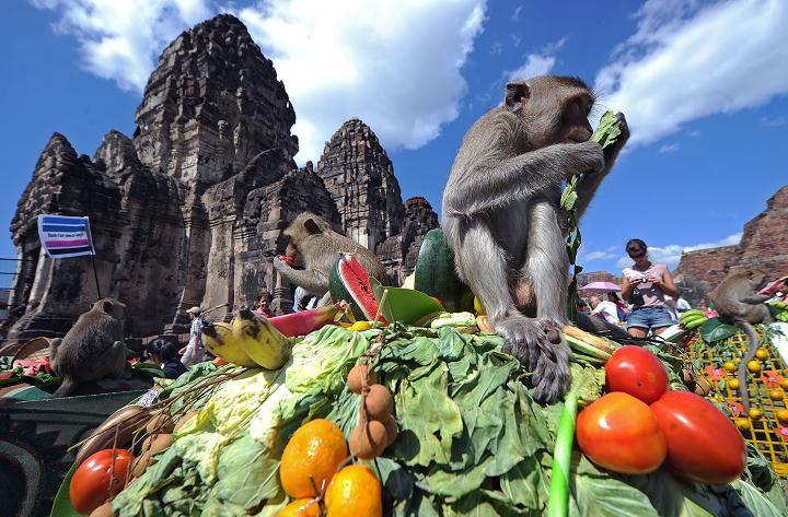 Insane Festivals Around The World
